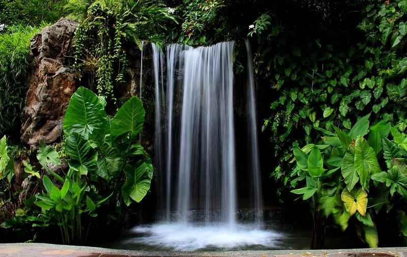 Водопад в ботаническом саду