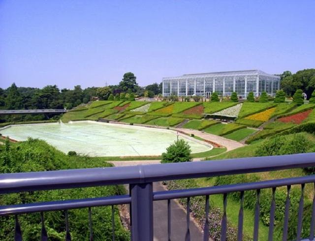 Бассейн с цветомузыкальным фонтаном в цветочном парке «Хамамацу»