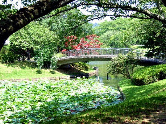 "Цветочный парк ""Хамамацу"" , каскад прудов"