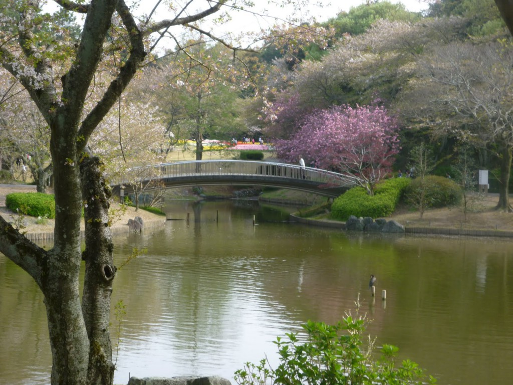 Японский сад«Хамамацу», каскад прудов