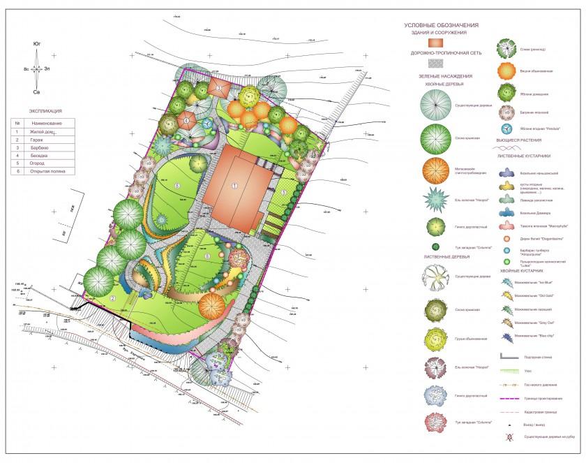 Благоустройство и озеленение приусадебного участка