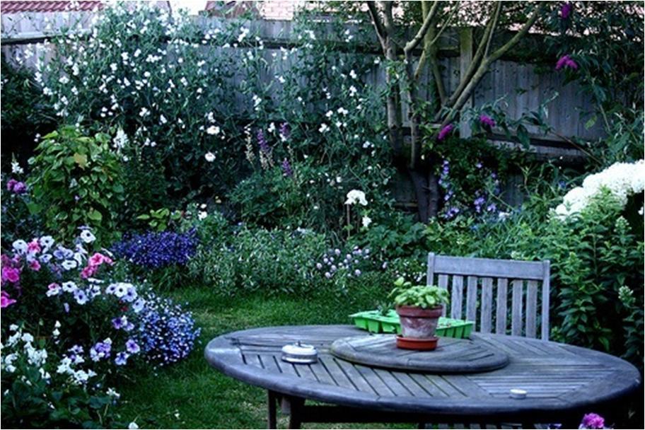 Ароматический сад (клумба)