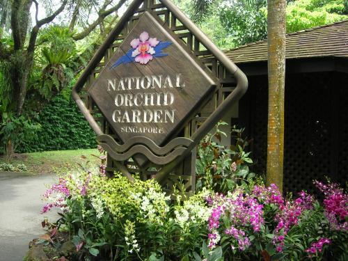 Сад орхидей в Ботаническом саду