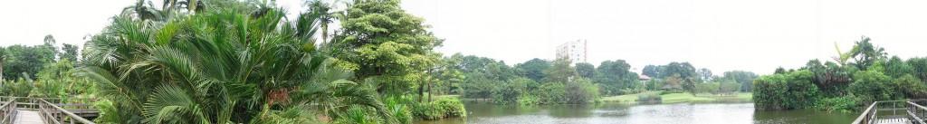 Панорама Ботанического сада в Сингапуре