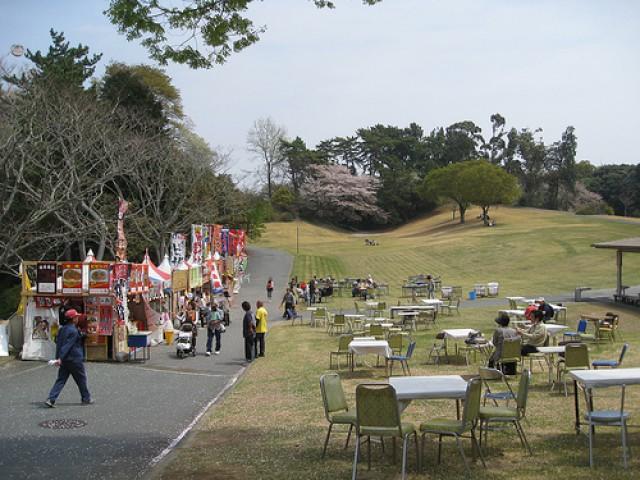 Поляна для отдыха  в японском саду «Хамамацу»